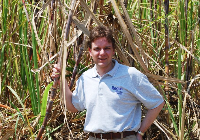 Ben Eastick inspecting Cuban sugar cane