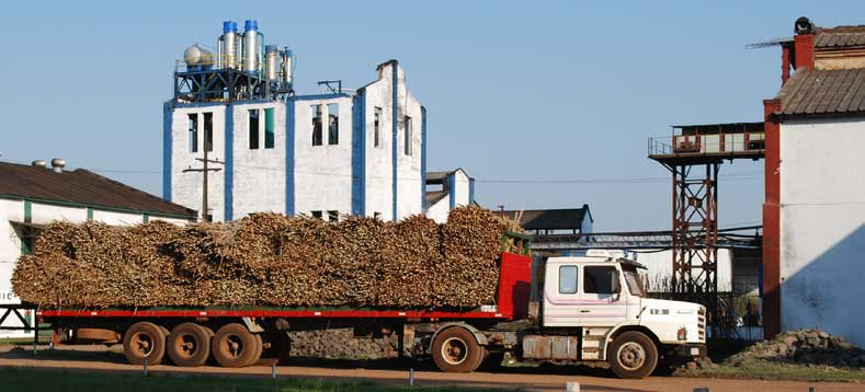 Sourcing Syrup Sugar Supplier Mills & Refineries