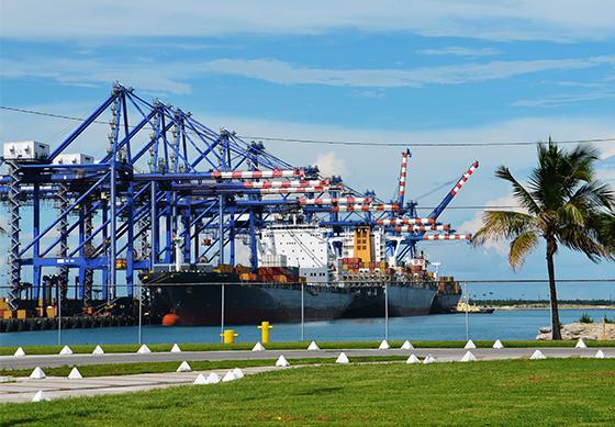 Bulk shipping container carrying sugar cargo